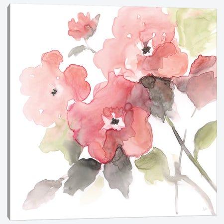 Coral Blush II Canvas Print #NAN328} by Nan Canvas Print