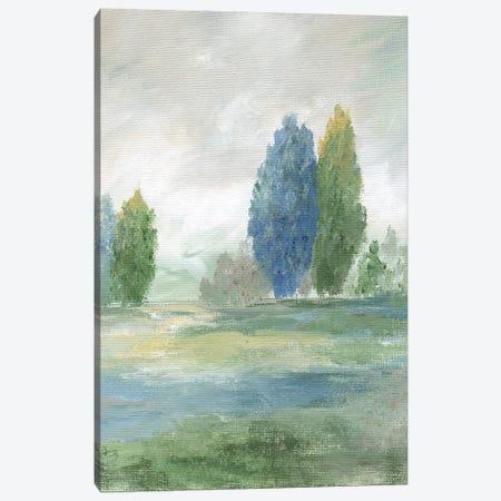 Jeweled Valley II Canvas Print #NAN335} by Nan Canvas Art Print