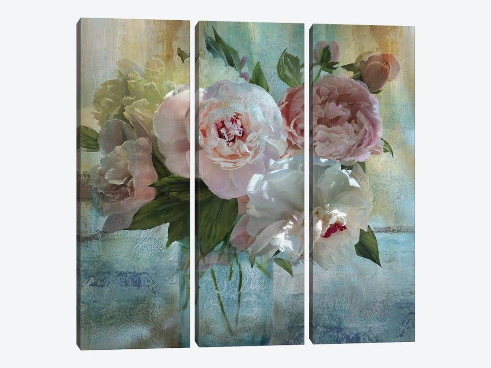 Peony Bouquet I by Nan 3-piece Canvas Artwork