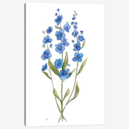 Petite Botanical II Canvas Print #NAN342} by Nan Art Print