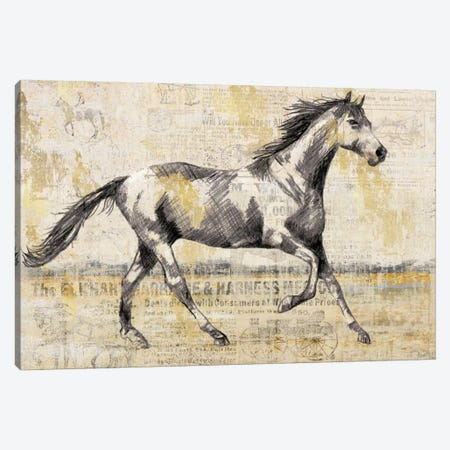 Golden Stallion I Canvas Print #NAN34} by Nan Canvas Print