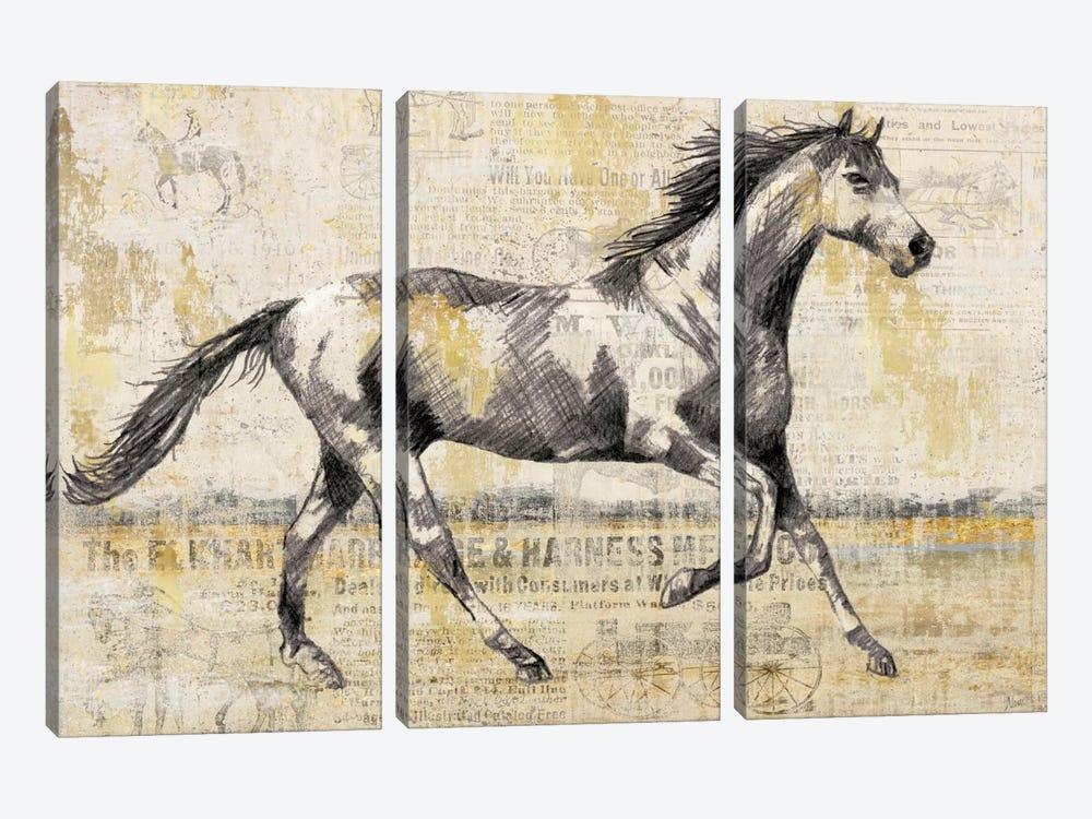Golden Stallion I 3-piece Canvas Art Print