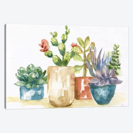 Summer Succulents I Canvas Print #NAN359} by Nan Canvas Art