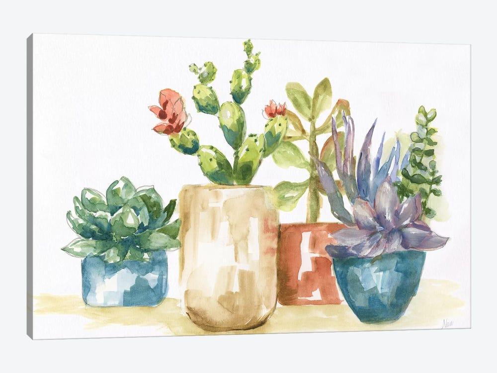 Summer Succulents I by Nan 1-piece Canvas Art