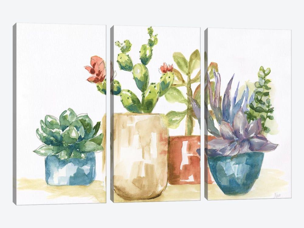 Summer Succulents I by Nan 3-piece Canvas Artwork