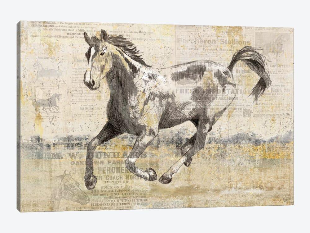 Golden Stallion II by Nan 1-piece Canvas Artwork