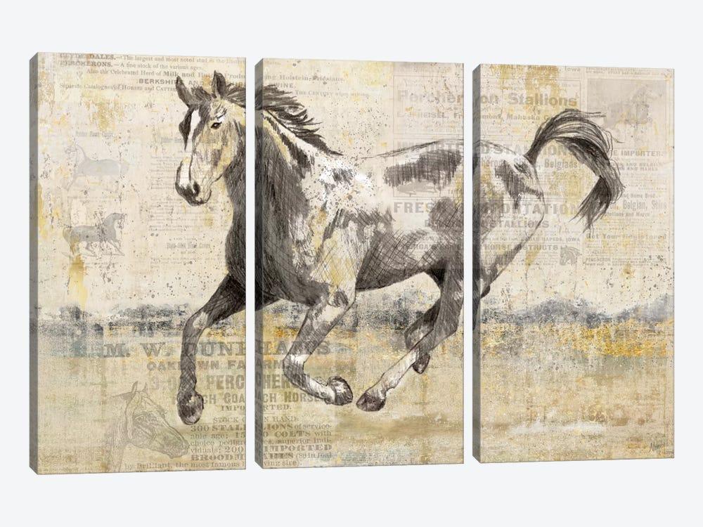 Golden Stallion II by Nan 3-piece Canvas Wall Art