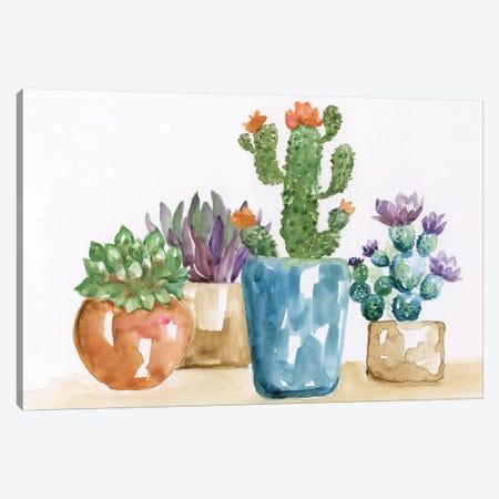 Summer Succulents II Canvas Print #NAN360} by Nan Canvas Print