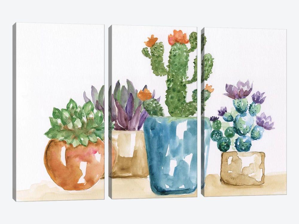 Summer Succulents II by Nan 3-piece Canvas Wall Art