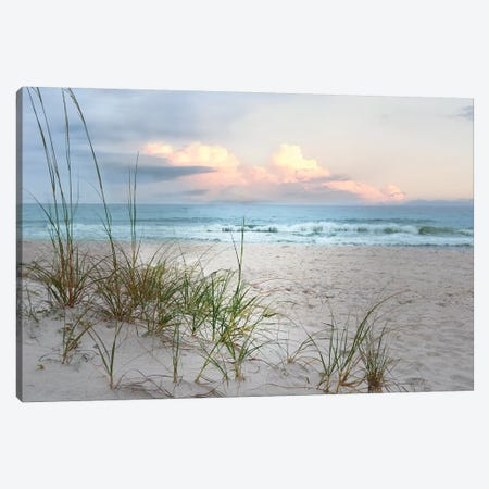 Beach Driftwood Canvas Print #NAN369} by Nan Canvas Art Print