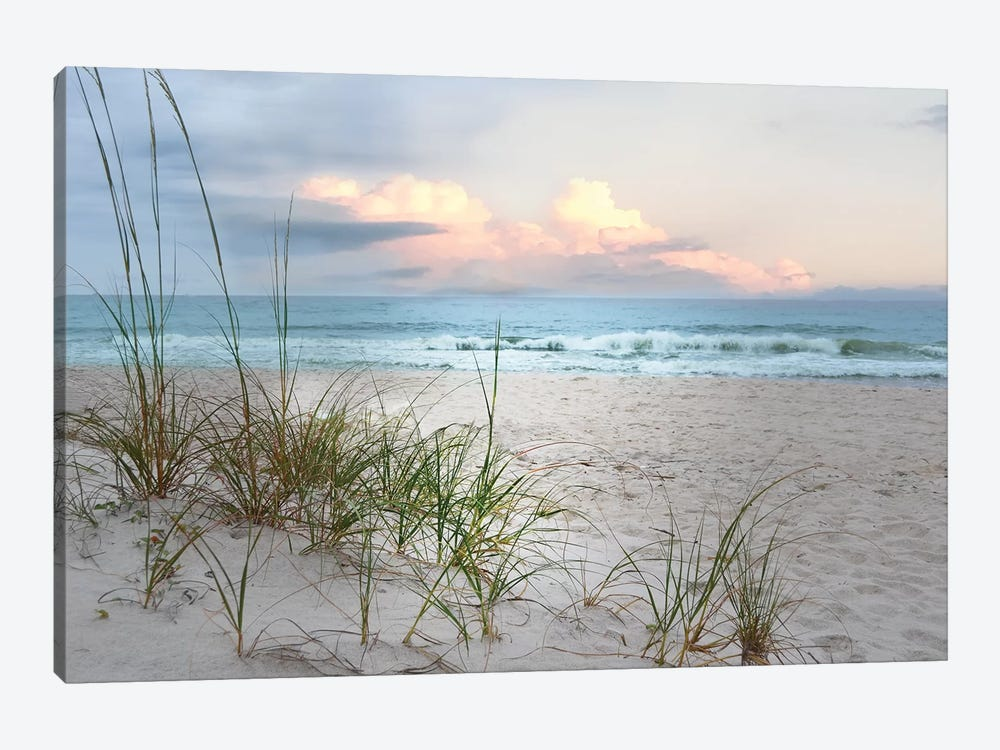 Beach Driftwood 1-piece Canvas Art Print
