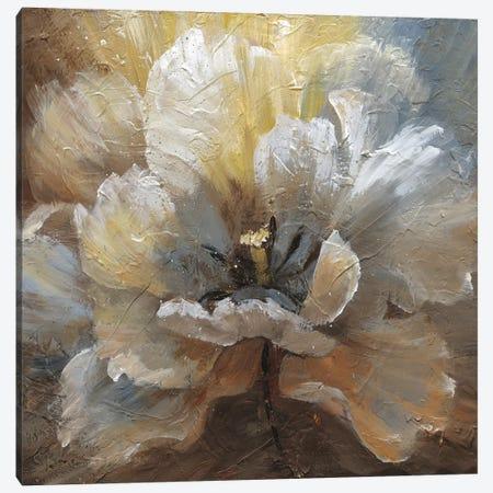 Blooming II Canvas Print #NAN371} by Nan Canvas Artwork