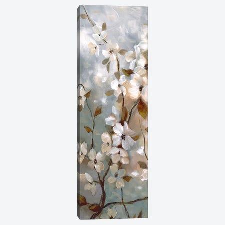 Blossoms of Spring I Canvas Print #NAN372} by Nan Canvas Wall Art