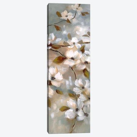 Blossoms of Spring II Canvas Print #NAN373} by Nan Canvas Art