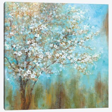 Cherry Blossoms Canvas Print #NAN383} by Nan Art Print