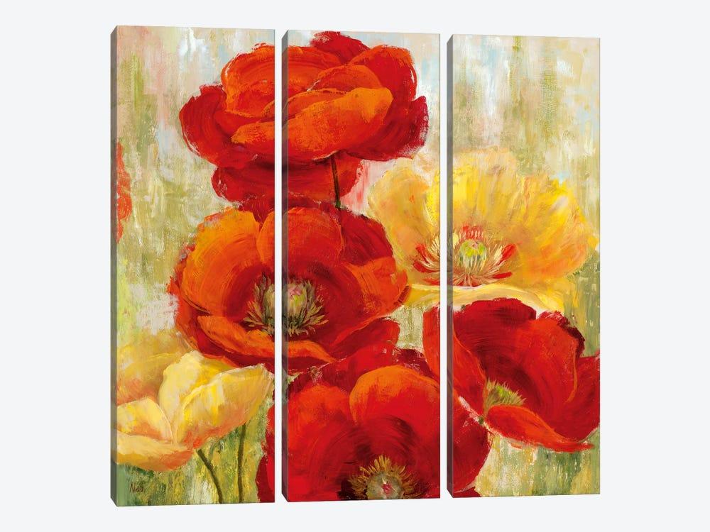 Flourishing Meadow II by Nan 3-piece Canvas Art