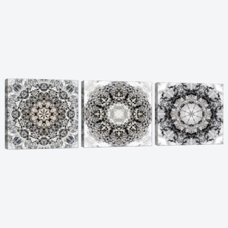 Black White Kaleidoscope Triptych Canvas Print Set #NAN3HSET001} by Nan Art Print