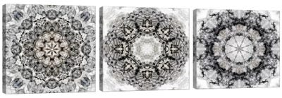 Black White Kaleidoscope Triptych Canvas Art Print