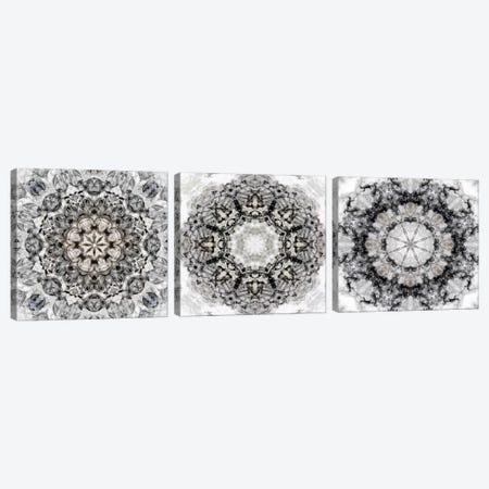 Black White Kaleidoscope Triptych Canvas Print Set #NAN3HSET001} by Nan Art Print