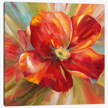 Island Blossom I Canvas Print #NAN411} by Nan Canvas Art Print
