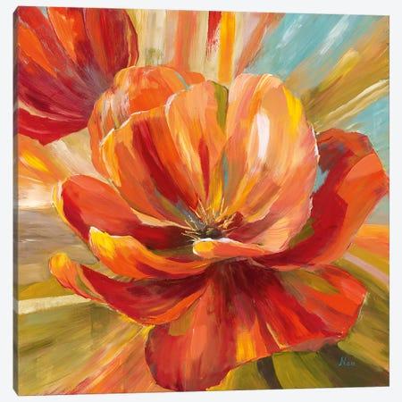 Island Blossom II 3-Piece Canvas #NAN412} by Nan Art Print