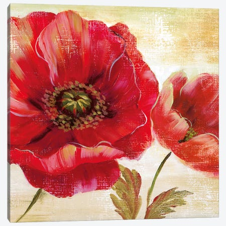 Passion for Poppies I 3-Piece Canvas #NAN434} by Nan Canvas Wall Art