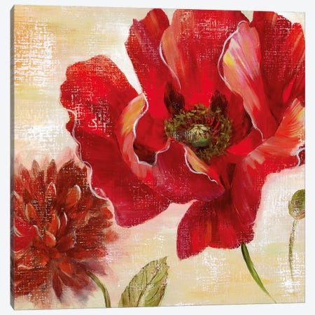 Passion for Poppies II Canvas Print #NAN435} by Nan Canvas Art