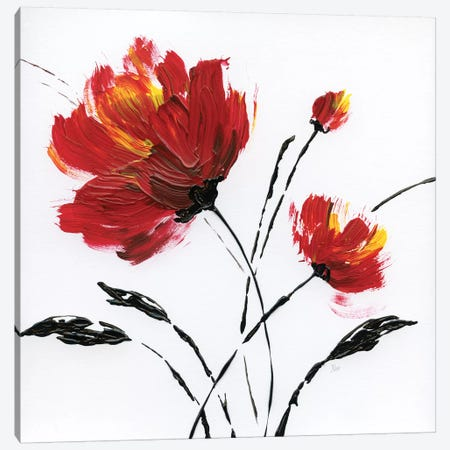 Red Poppy Splash II 3-Piece Canvas #NAN436} by Nan Canvas Art
