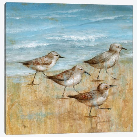 Sandpipers I Canvas Print #NAN445} by Nan Canvas Art Print