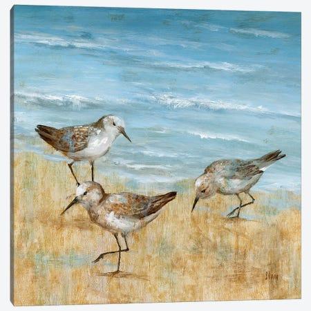 Sandpipers II Canvas Print #NAN446} by Nan Canvas Art Print