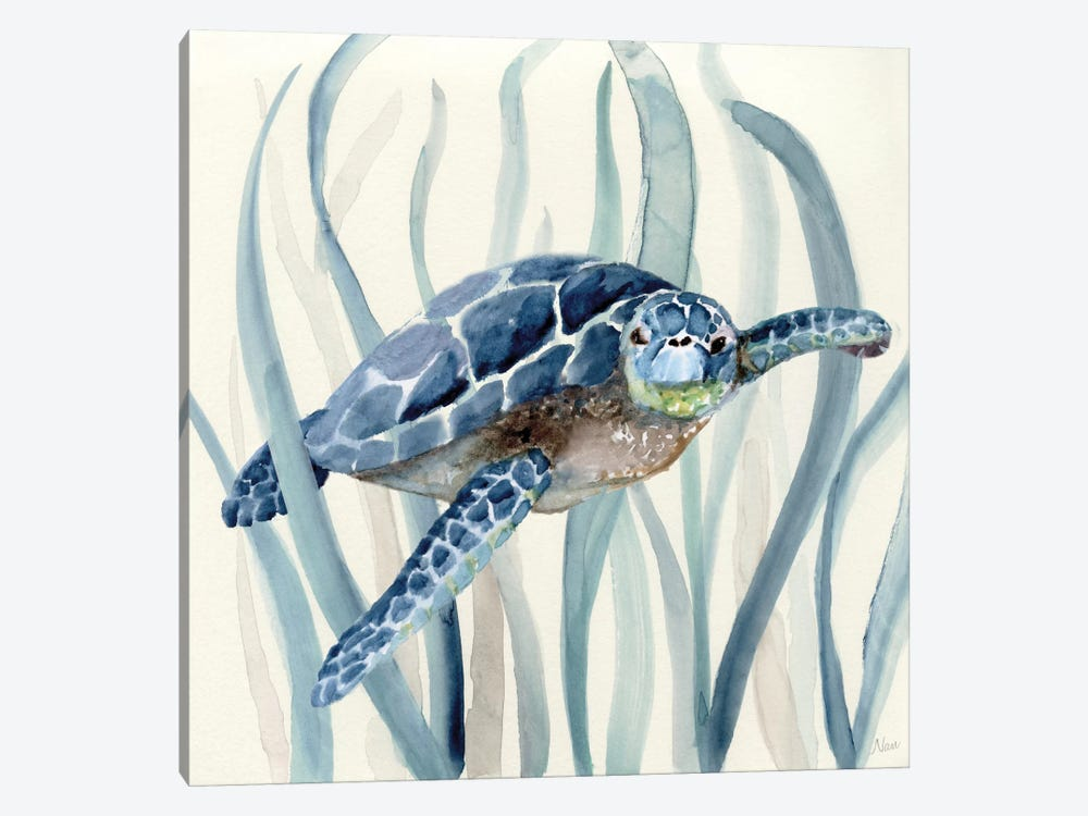 Turtle in Seagrass I by Nan 1-piece Canvas Wall Art