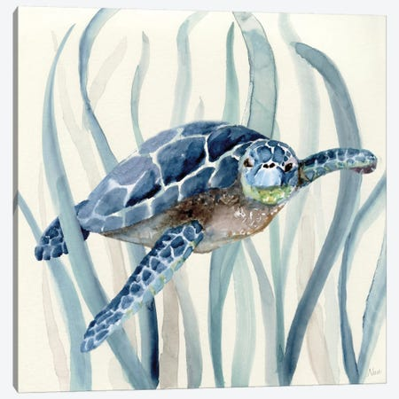 Turtle in Seagrass I Canvas Print #NAN44} by Nan Canvas Art