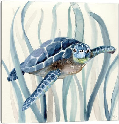 Turtle in Seagrass I Canvas Art Print