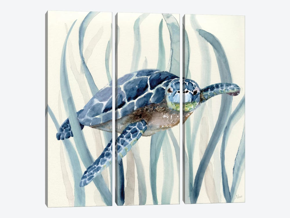 Turtle in Seagrass I by Nan 3-piece Canvas Wall Art