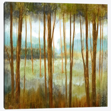 Soft Forest I Canvas Print #NAN454} by Nan Canvas Wall Art