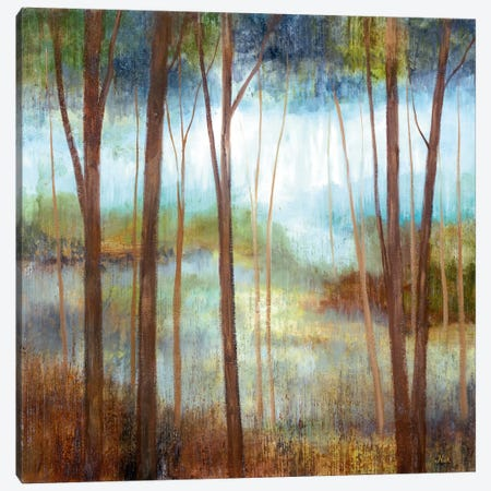Soft Forest II Canvas Print #NAN455} by Nan Canvas Art