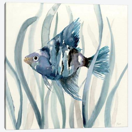 Fish in Seagrass II Canvas Print #NAN45} by Nan Canvas Artwork
