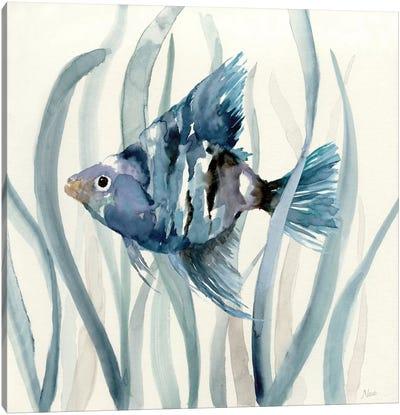 Fish in Seagrass II Canvas Art Print