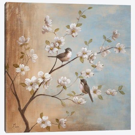 Sweet Song I Canvas Print #NAN466} by Nan Canvas Print
