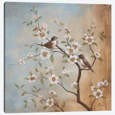 Sweet Song II Canvas Print #NAN467} by Nan Canvas Print