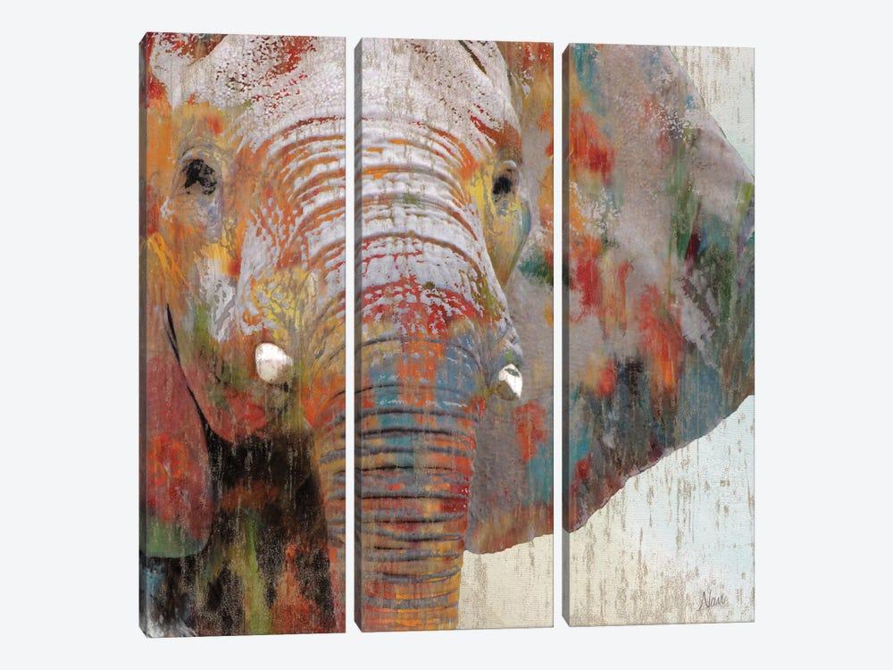 Paint Splash Elephant by Nan 3-piece Art Print
