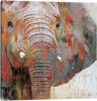 Paint Splash Elephant Canvas Art Print
