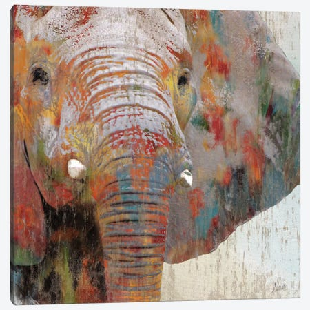 Paint Splash Elephant Canvas Print #NAN47} by Nan Canvas Artwork