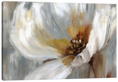 Emboldened Poppy Canvas Art Print