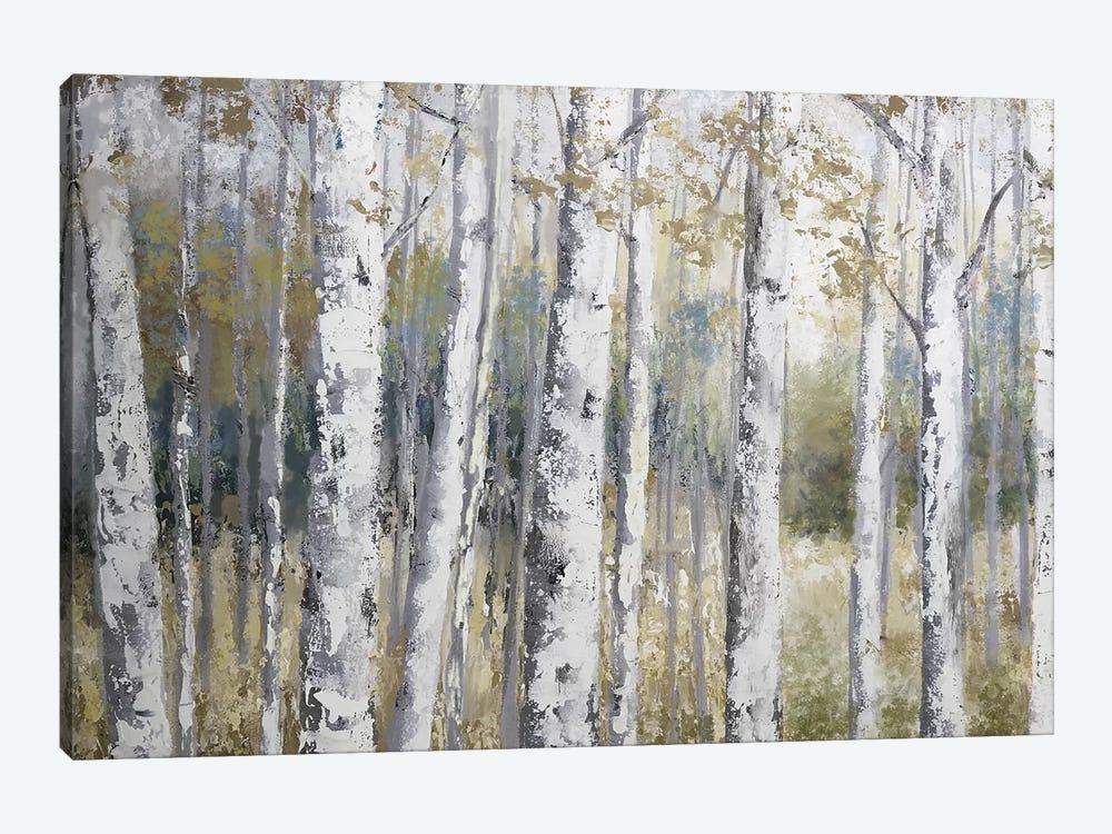 Hidden Birch by Nan 1-piece Canvas Print