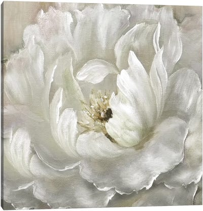 Perfect Peony Canvas Art Print