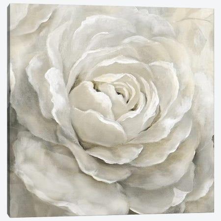 Petal Perfect Canvas Print #NAN489} by Nan Canvas Art
