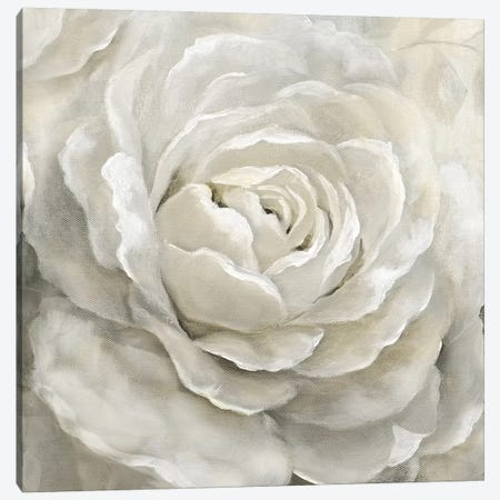 Petal Perfect Canvas Print #NAN489} by Nan Canvas Art
