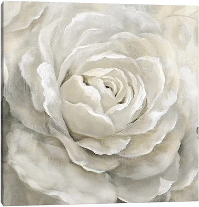 Petal Perfect Canvas Art Print