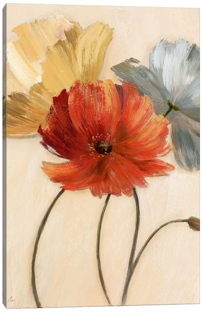 Poppy Palette I Canvas Art Print